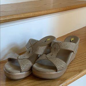 Dressy Women's shoes